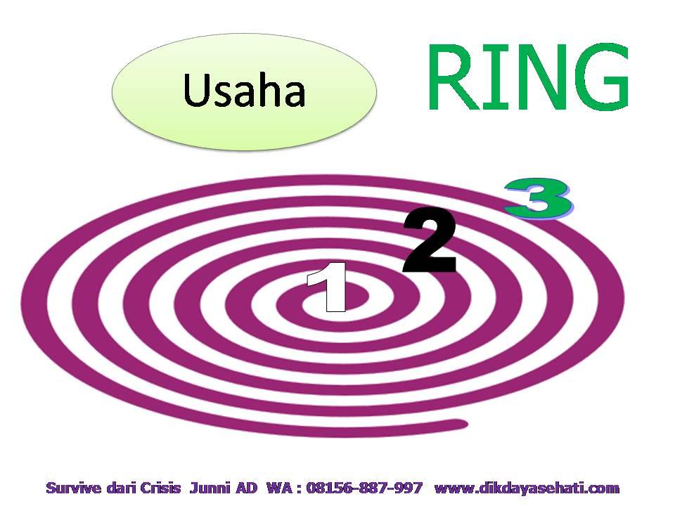 4 Kunci Survive Dari Crisis Coach H. Junni AD, S.Psi 08156-887-997 www.dikdayasehati.com (11)